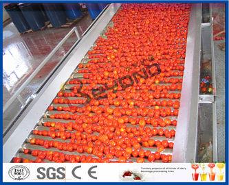 Tomaat die de Verwerkingslijn van de Machinetomaat Volledige/Semi Automatische 2 - 50 T/H planten